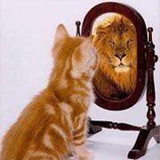 l'estime de soi est importante pour réussir à écrire un roman