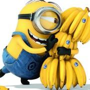 7 lois du succès : le minion a réussi à trouver des bananes