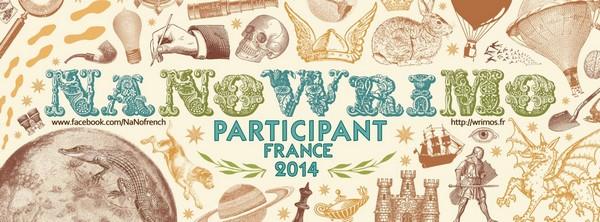 Bannière du NaNoWriMo écrivain participant 2014