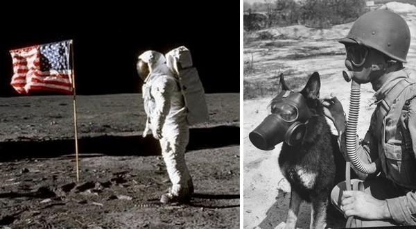 inspiration pour écrire de l'uchronie : Neil Armstrong sur la Lune et masque à gaz