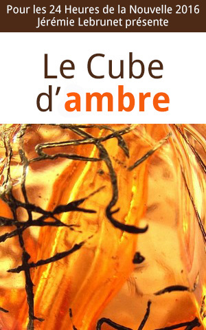 histoire de fantasy 24h de la nouvelle : Le Cube d'Ambre, par Jérémie Lebrunet